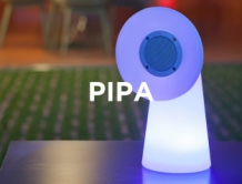 NewGarden Pipa LED multicolor, wireless en Bluetooth speaker